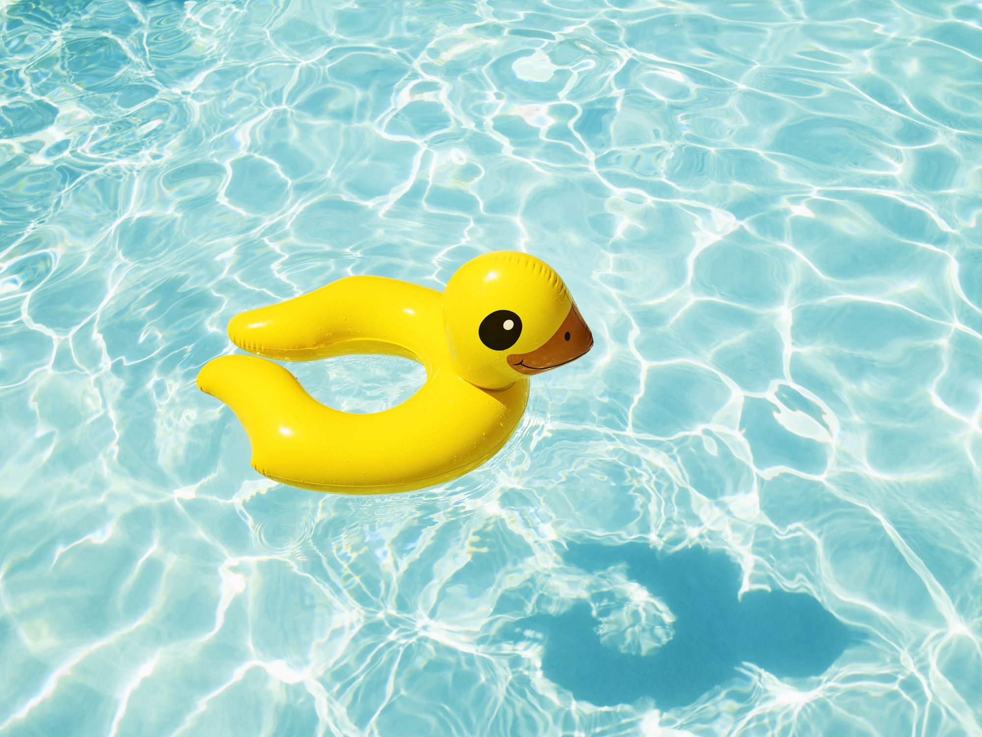 Duckie - I Heart Palm Springs Collection - Fine Art Photography by Toby Dixon