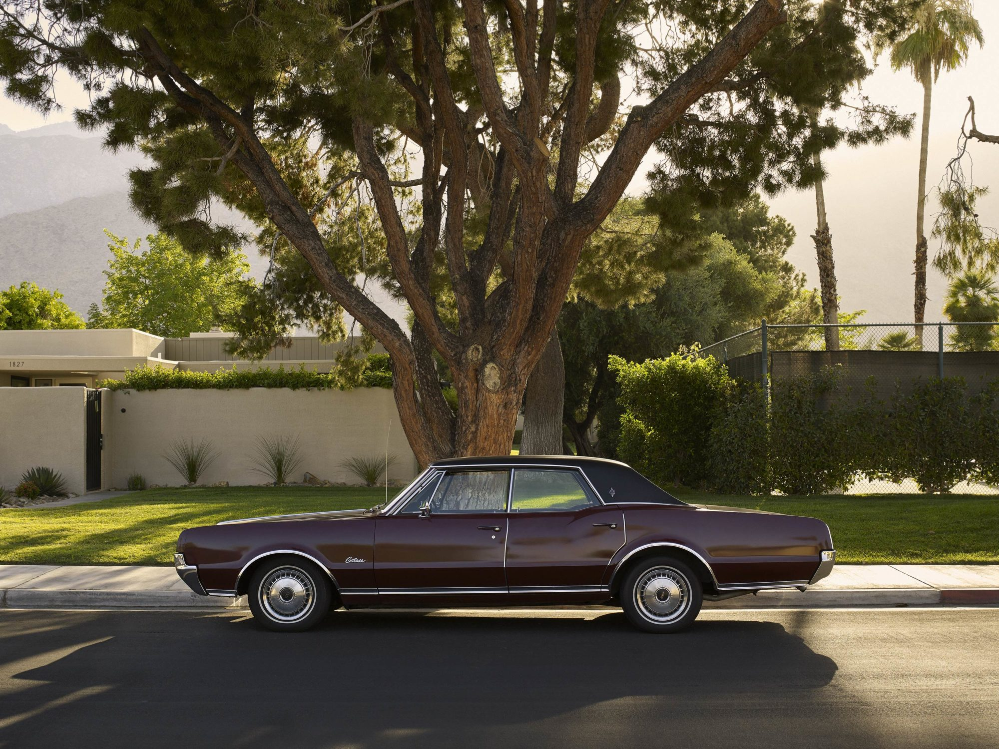 Oldsmobile - I Heart Palm Springs Collection - Fine Art Photography by Toby Dixon