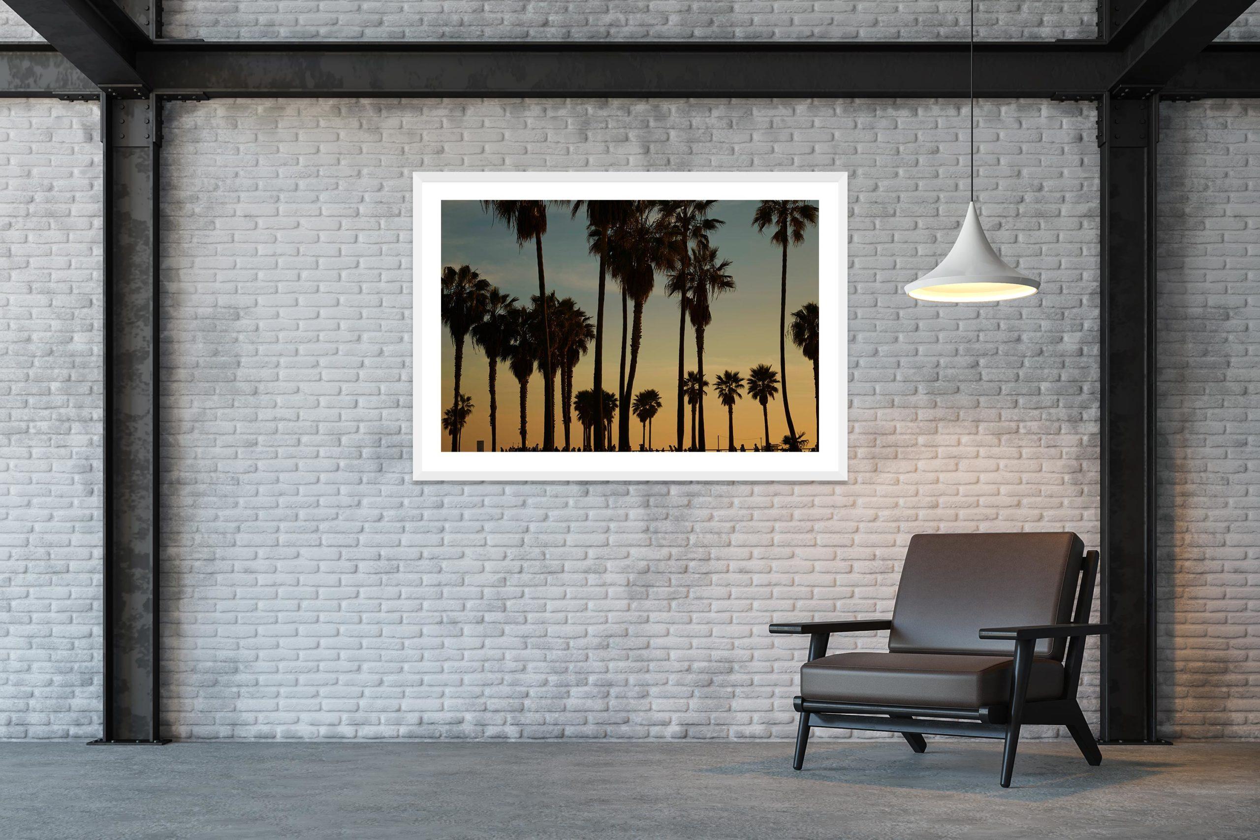 Palms - White Frame - Skate Park, Venice Beach Collection - Fine Art Photography by Toby Dixon