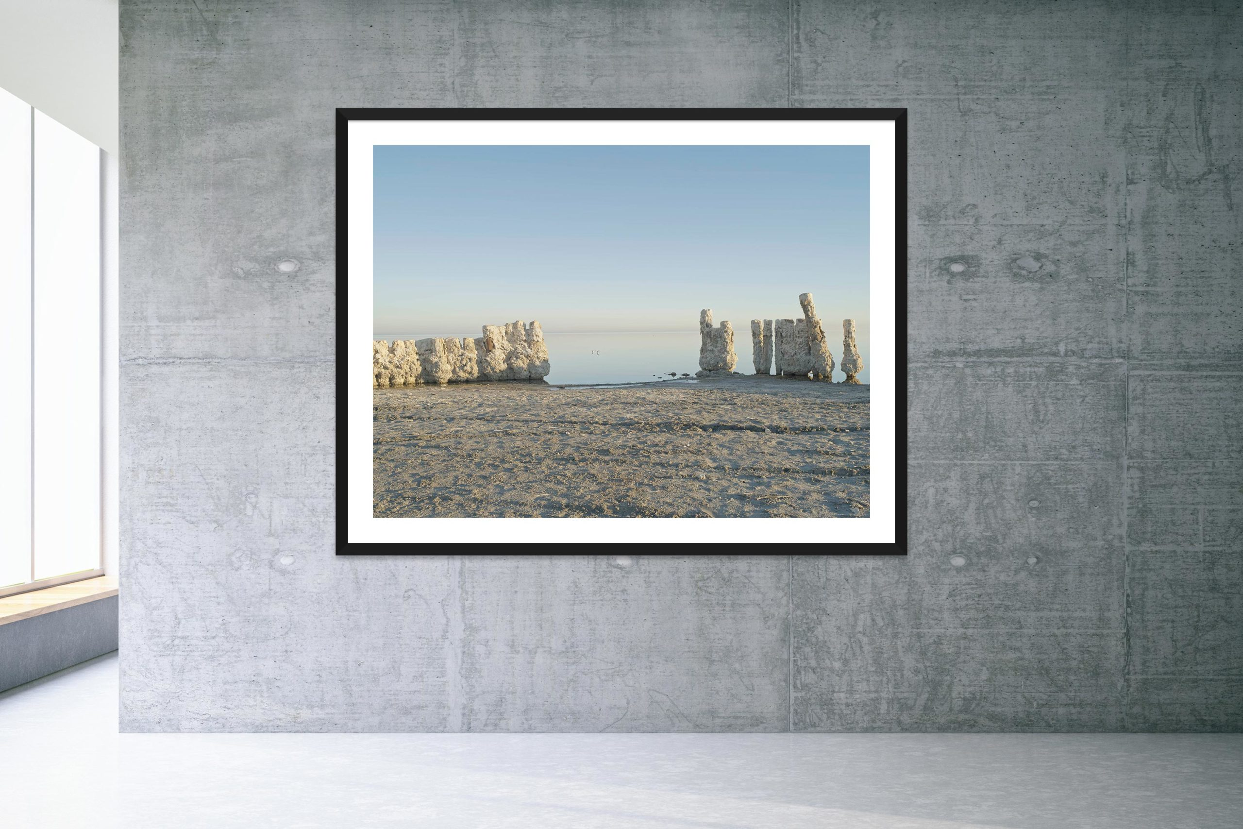 Two Birds - Black Frame - Welcome To Bombay Beach Collection - Fine Art Photography by Toby Dixon