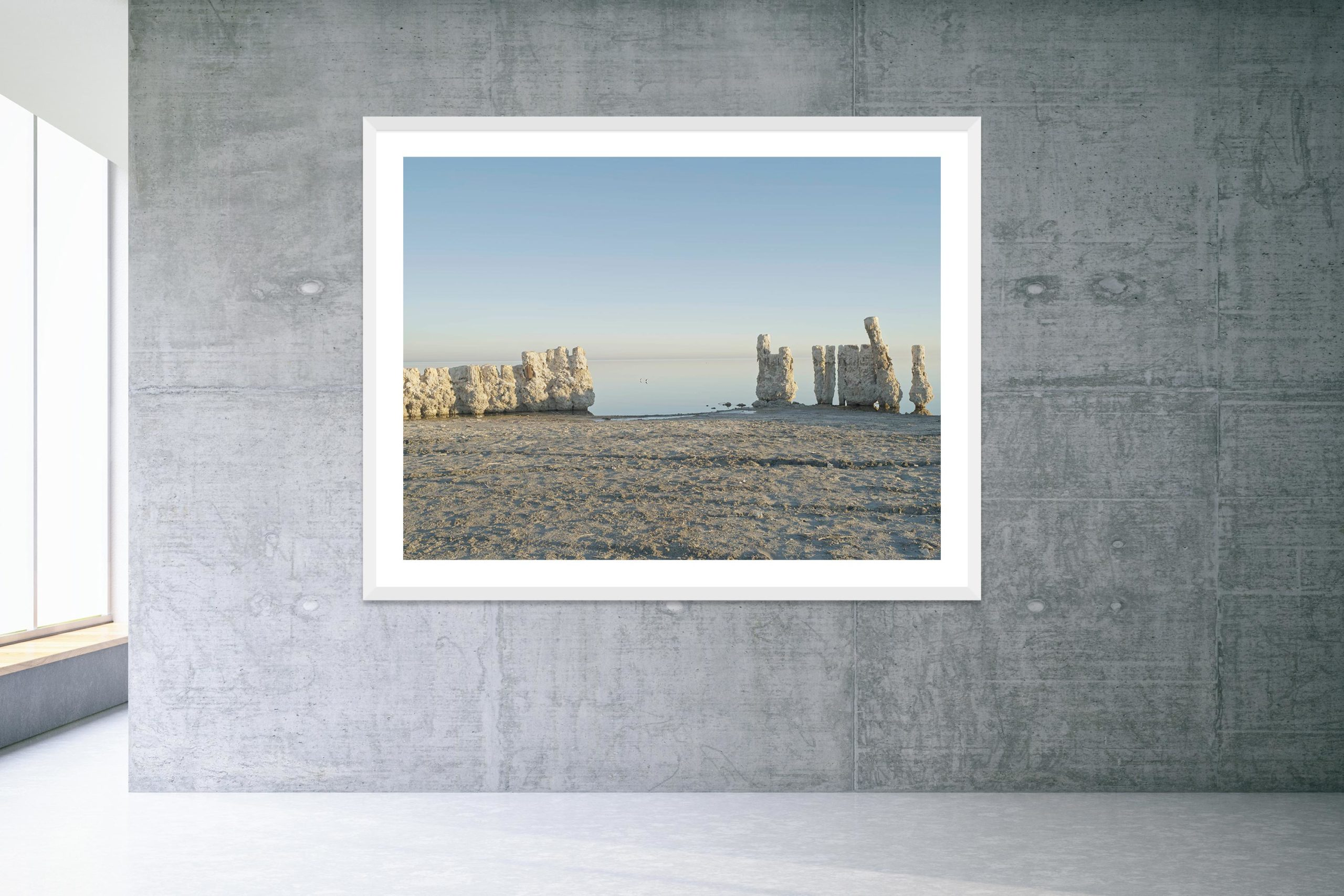 Two Birds - White Frame - Welcome To Bombay Beach Collection - Fine Art Photography by Toby Dixon