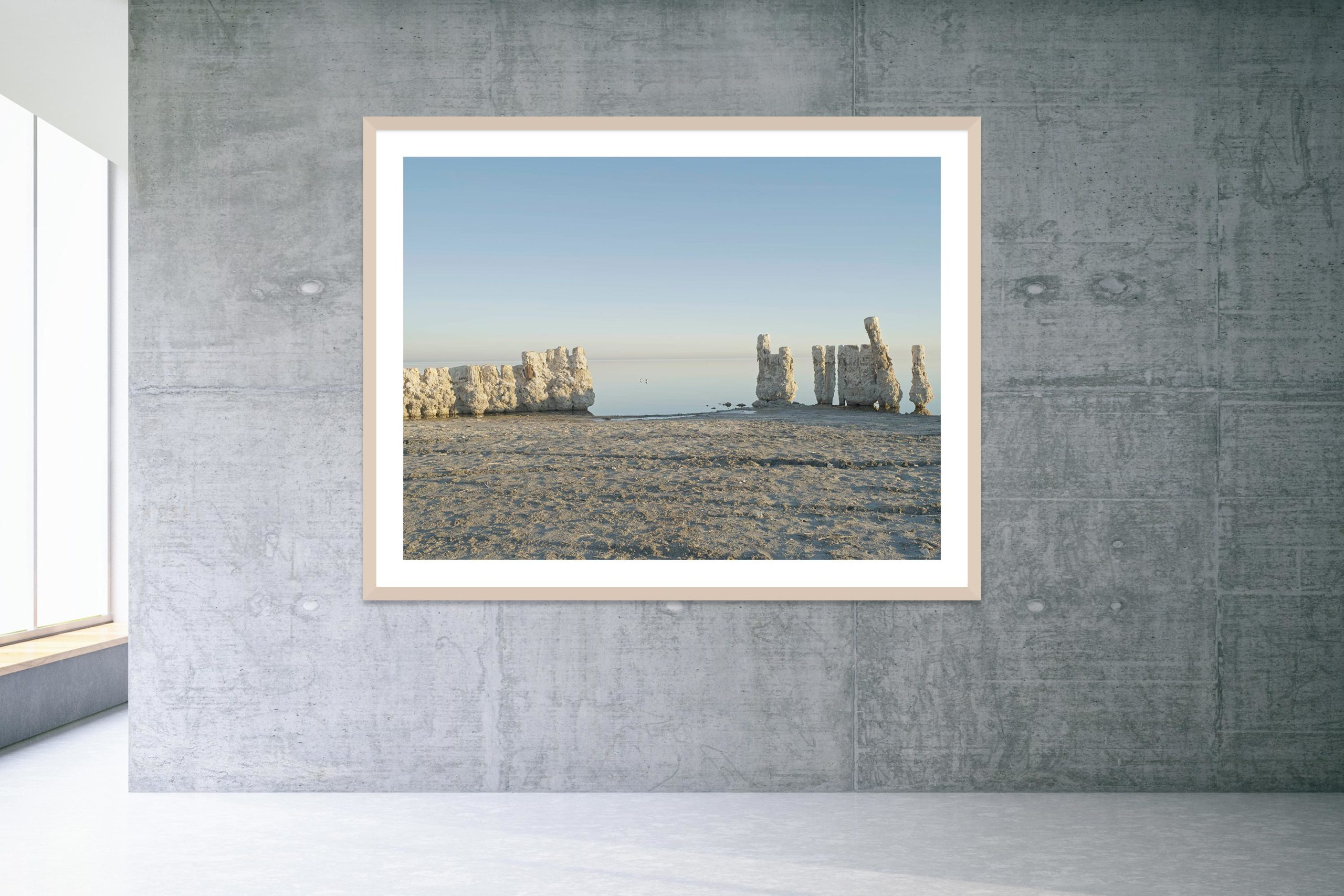 Two Birds - Timber Frame - Welcome To Bombay Beach Collection - Fine Art Photography by Toby Dixon
