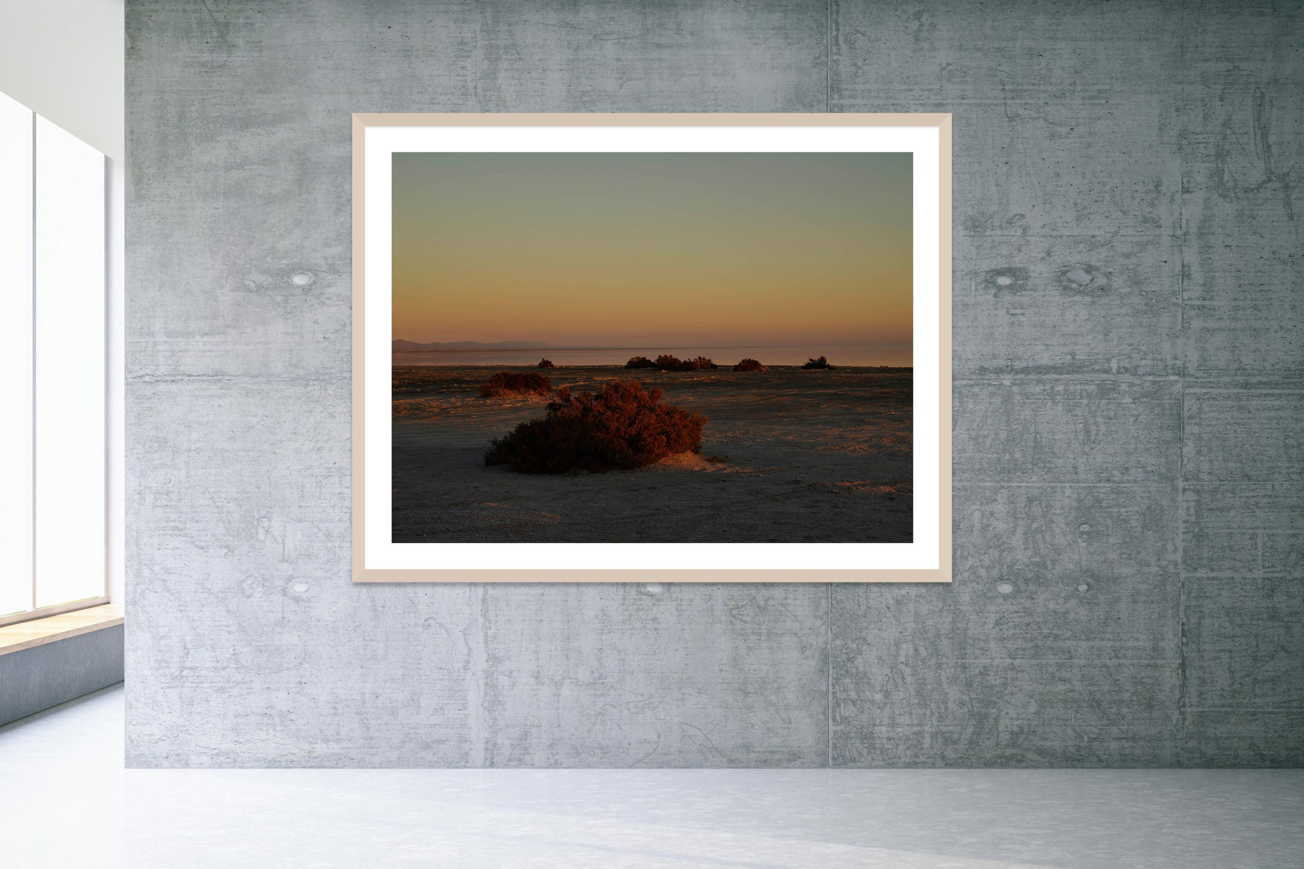 May As Well - Bonus Track - Timber Frame - Welcome To Bombay Beach Collection - Fine Art Photography by Toby Dixon