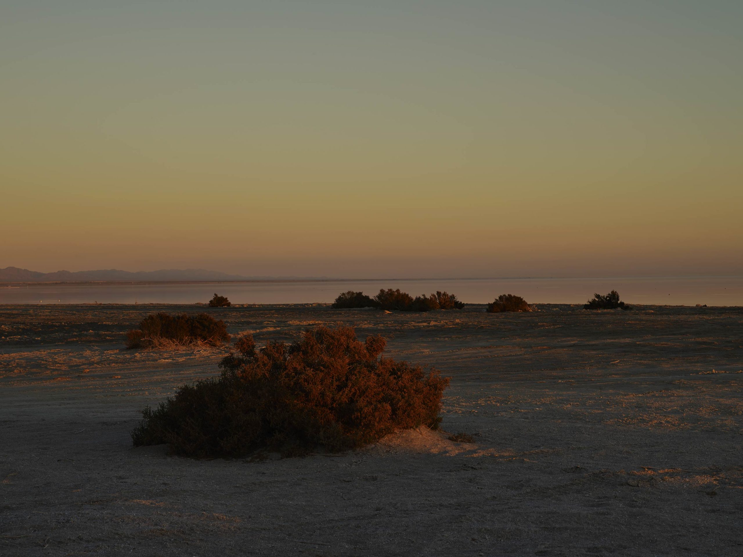 May As Well - Bonus Track - Welcome To Bombay Beach Collection - Fine Art Photography by Toby Dixon